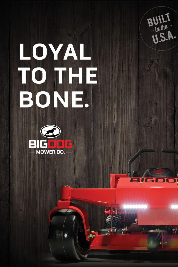 Big Dog POP poster for 2015!