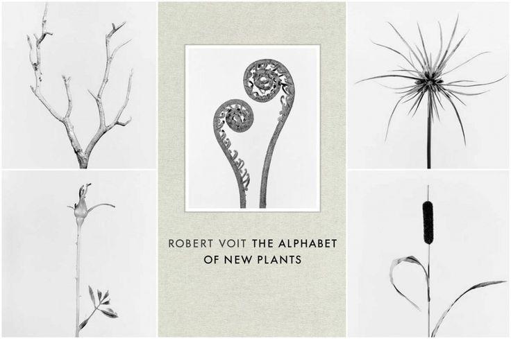 Robert Voit - 'The Alphabet of New Plants'