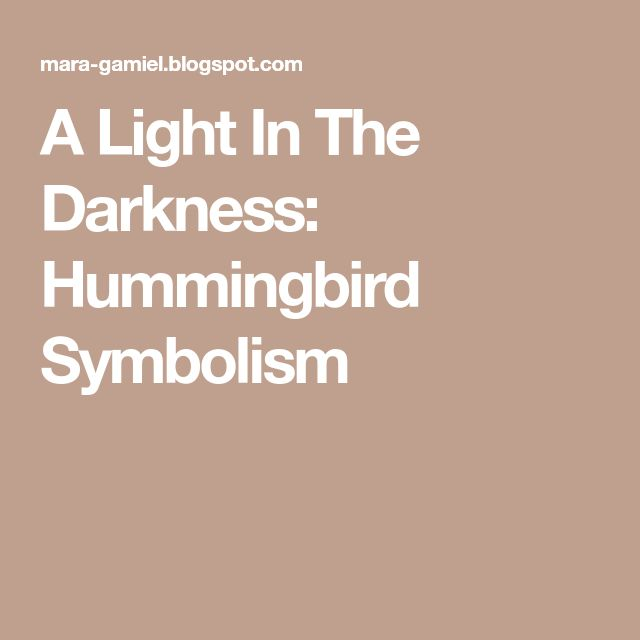A Light In The Darkness: Hummingbird Symbolism