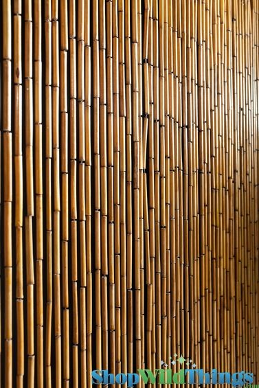 "Plain Bamboo Beaded Curtain 32""  x 76""  - 60 Strands"