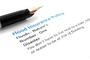 Flood Flaps Flood VentsFlood Insurance for Crawl Spaces and Basements #basement #flood #insurance http://san-francisco.remmont.com/flood-flaps-flood-ventsflood-insurance-for-crawl-spaces-and-basements-basement-flood-insurance/  # Simple Flood Insurance Facts for Crawl Spaces and Basements: If you are located in a flood plain, you are required to have flood insurance. If you are in a flood plain, and have a basement or crawl space, you want to protect your basement or crawl space with flood…