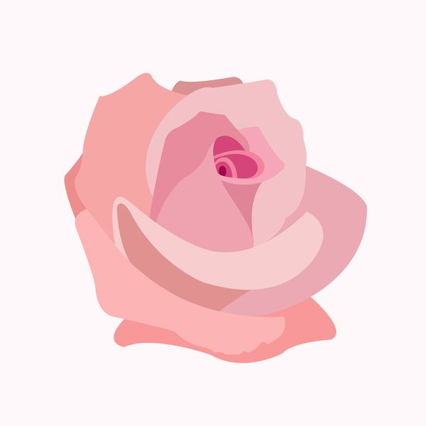 Pink Rose Illustration Art Print by Natalie Paskell | Society6