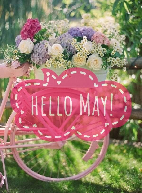Image about may in Helló Months! 🍁❄️🌨 by ♛ᴷᵅᴿᵅᴮᵋᴸᴸᵅ♕ Seasons Months, Days And Months, Seasons Of The Year, Months In A Year, Welcome May, Welcome Spring, Spring Months, Spring Time, May Flowers