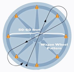 """The """"Wagon Wheel"""" horse-training exercise will help you improve your American Quarter Horse in less time. In this exercise, you will be able to teach your horse willingness, calmness, impulsion, straightness, suppleness and balance, which are all important in the horse show arena. Read more on America's Horse Daily."""