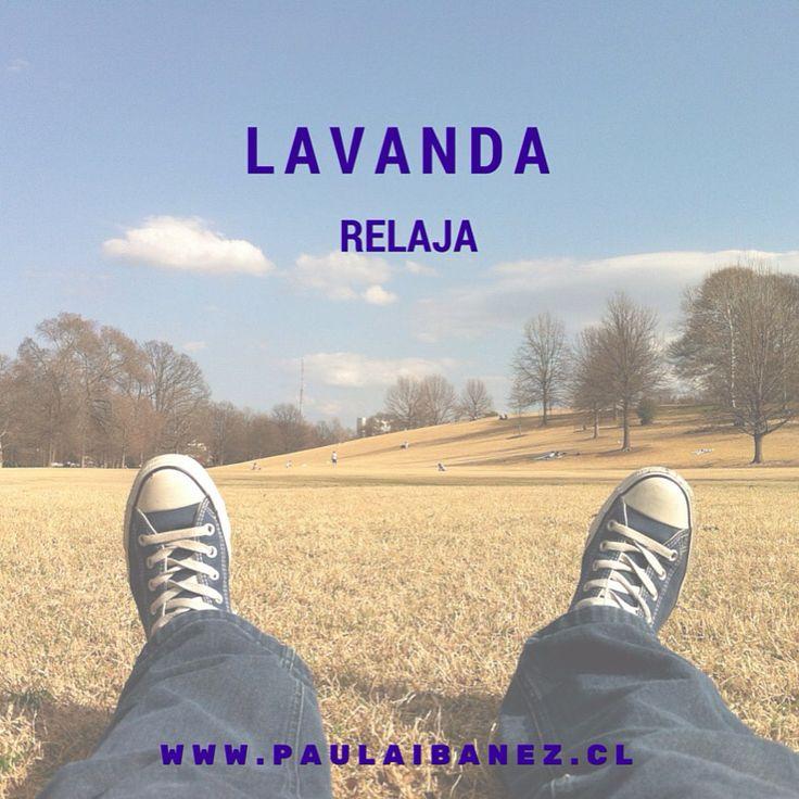 #lavanda #relaja