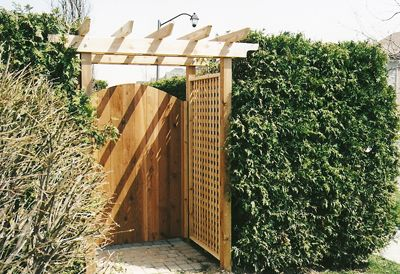 Wooden Fence Gate, Privacy Screens , Arbor with a Live Fence