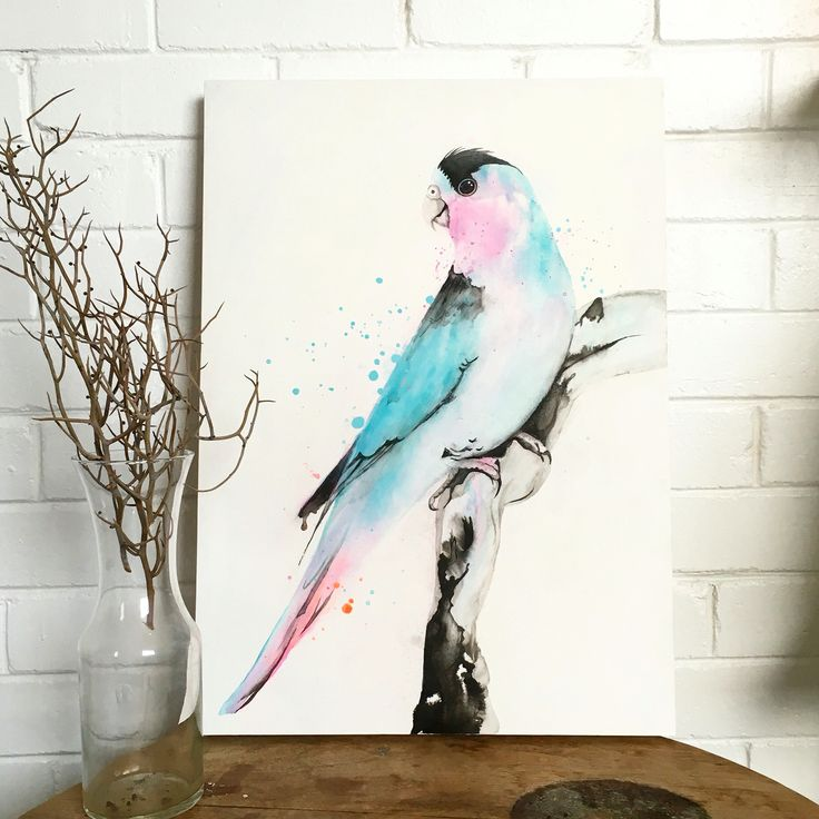 A new bird painting by Maria Harding on display at The Makery on Oxford st, darlinghurst.