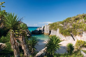 Bermuda's pink sands, blue waters, craggy rock formations and lush flora create an ideal environment for outdoor adventures. Here are the top 40 ways to get out into nature in Bermuda.