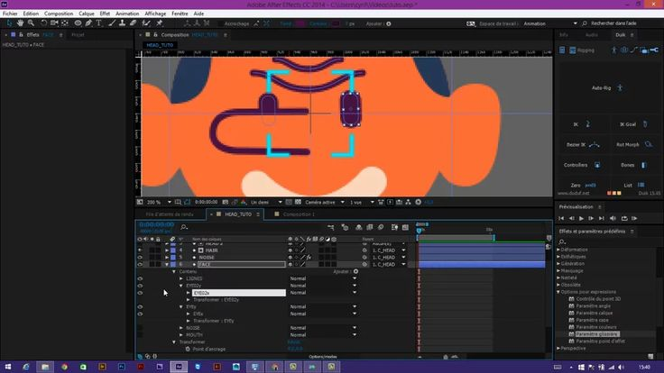 TUTORIAL HEAD RIG AFTER EFFECT (Advanced) FRENCH on Vimeo