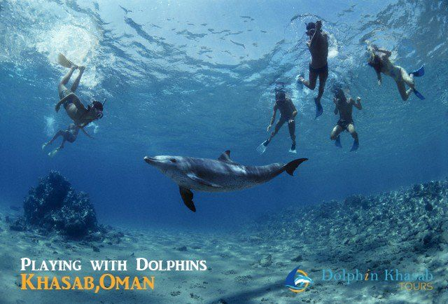 Playing with #Dolphins in #Musandam, #Oman. #Snorkeling #Khasab
