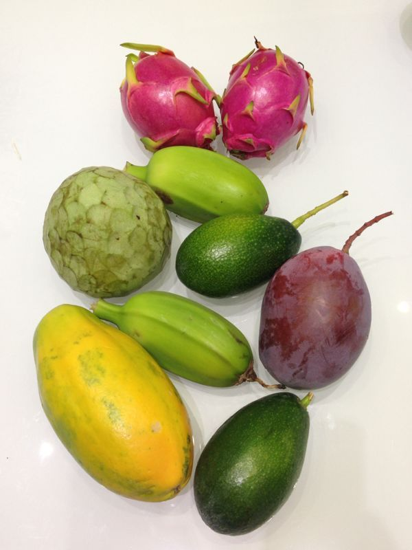 Cesta de Tropicales de Finca el Pinero de #Almuñécar! #mango #aguacate #pitahaya #chirimoya #plátano #papaya http://www.victoriaplayahotel.com/blog/frutas-tropicales-de-finca-el-pinero-de-almunecar/