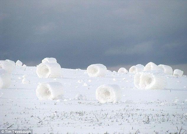 Os anéis de neve são formados quando os fortes ventos sopram a neve ao longo da pradaria até que se formam bolas de neve naturais. Se isto ocorre em um morro, vai continuar a rolar e aumentar de tamanho. A parte menor e mais fraca entram em colapso deixando estes buracos que dão o aspecto de rosca. As maiores encontradas mediam 25 cm de altura. Pradaria de Idaho, USA.