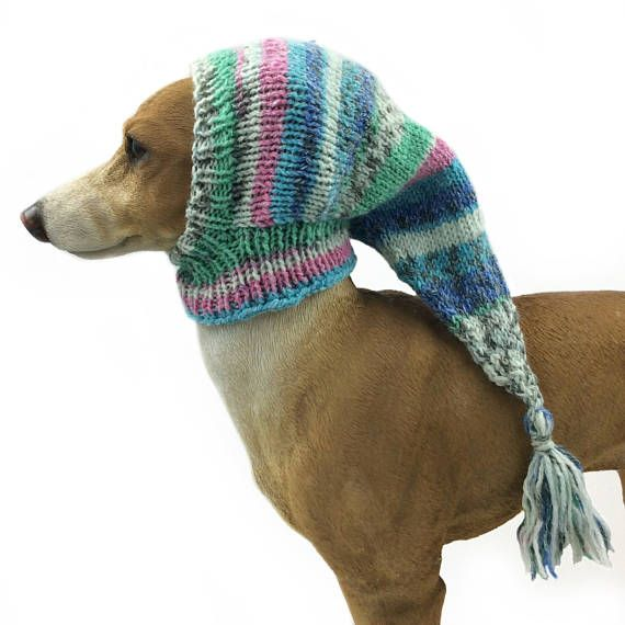 Brilliant Pure silk Greyhound Snood Canine Hat lurcher, Italian greyhound, whippet, canine garments, canine snood galgo pixie pet accent provides