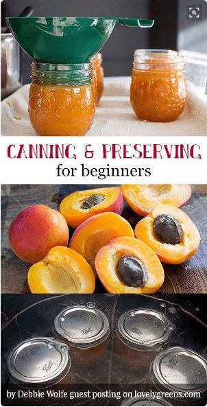 nice Learn to preserve fresh fruit and vegetables in homemade jellies, jams, chutneys, pickles