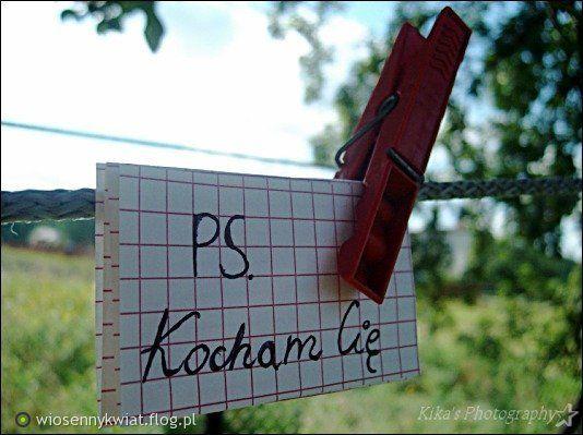 Kocham Cię. Polish, I love you :)