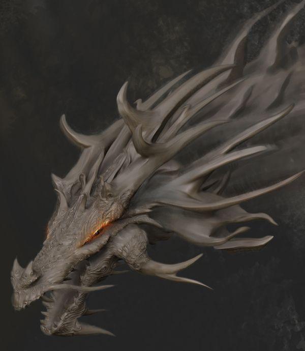 Dragon Design Project on Behance
