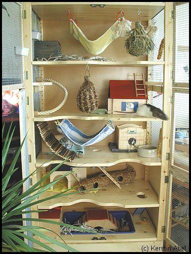 die besten 25 meerschweinchen k fig ideen auf pinterest igel k fig guinea und. Black Bedroom Furniture Sets. Home Design Ideas