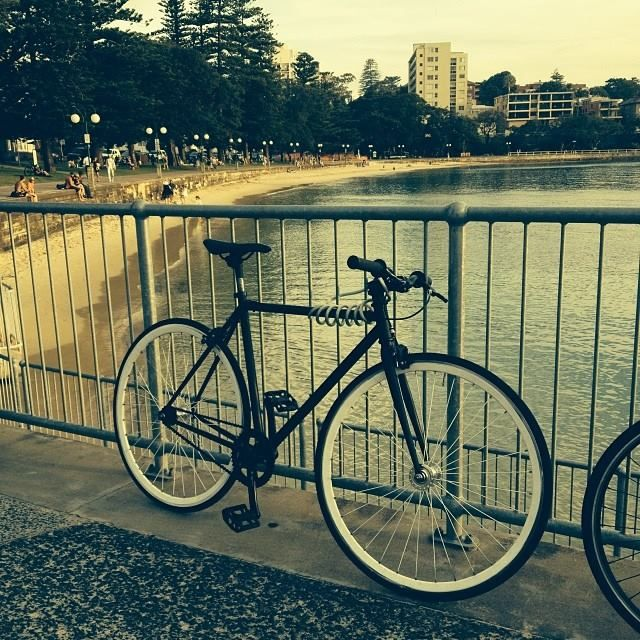 #CellMessenger with #velocity wheels upgrade spotted at #manly wharf