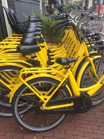 Yellow Bike Tours & Rental - Amsterdam
