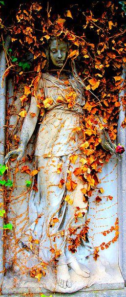 adorned in autumn.