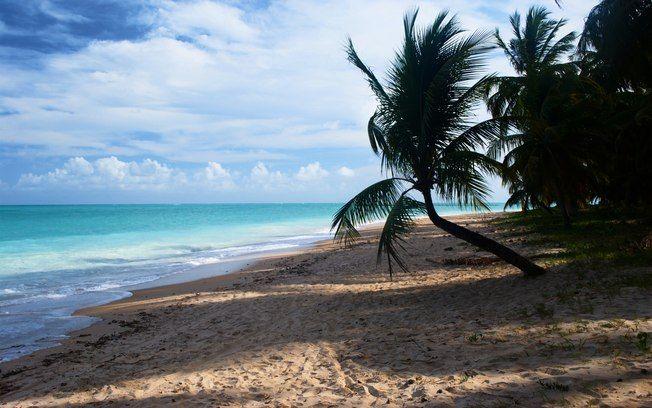 A Praia de Maragogi, em Alagoas, tem areia fina, coquerais e águas claras. Foto: Thinkstock/Getty Images
