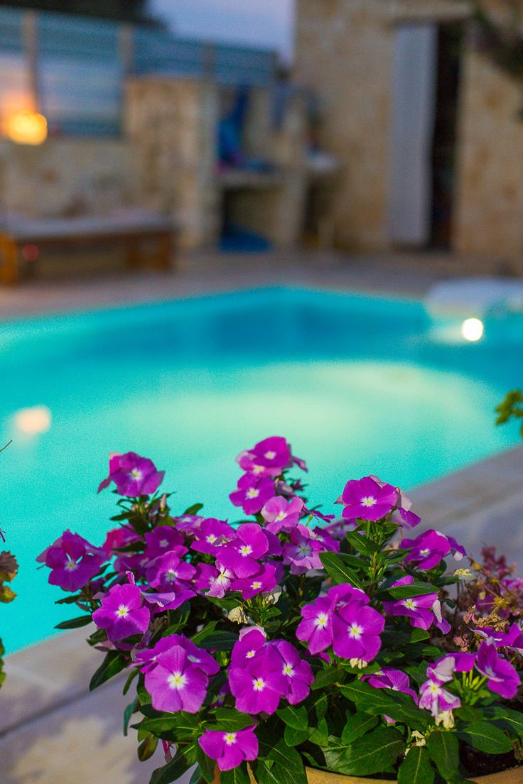 diktamos.gr Diktamos Villas, Rethymno, Crete, Greece #diktamos #ammos #mitos #notos #villa #rethymno #crete #greece #vacation_rental #holidays #private #luxurious_accommodation #summer_in_crete #visit_greece