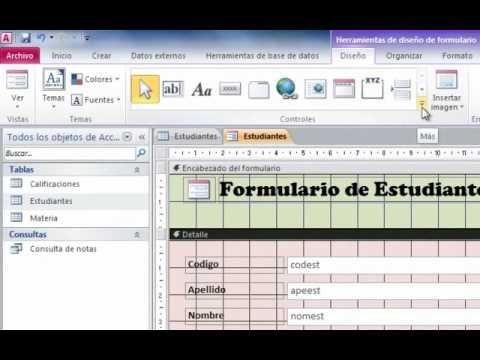 Crear consultas y formularios con Access