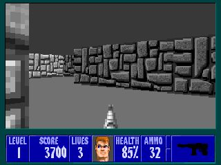 World War II had a large impact on the development of countries, economy and politics, so reminiscences of it can be seen even today. Of course, this important period in human history has influenced numerous video games and by far some of the most important titles to feature this setting is Wolfenstein 3D.