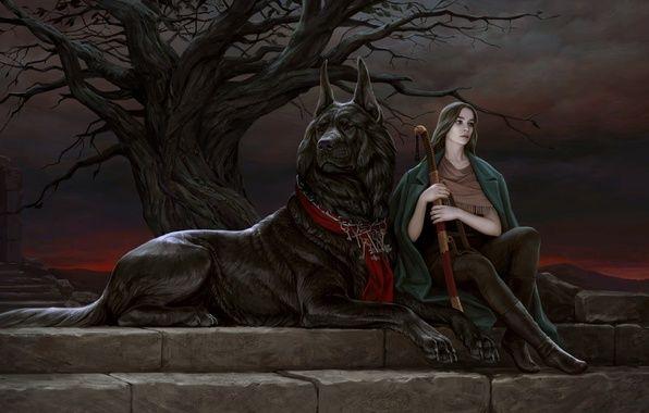 Фото обои собака, поза, животное, взгляд, арт, дерево, девушка, сидит, ветки, закат