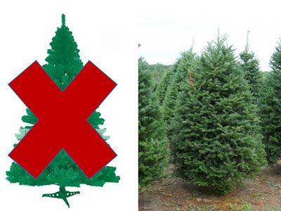 Recicleando: Naturalmente: el árbol de Navidad