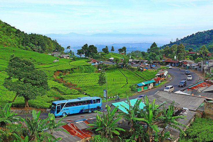 Puncak Bogor, Jawa Barat