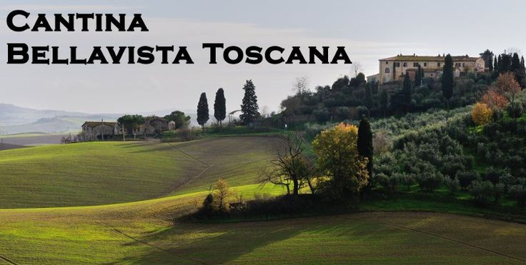 Cantina Bellavista Toscana Tuscany Italy winery profile information vineyards…