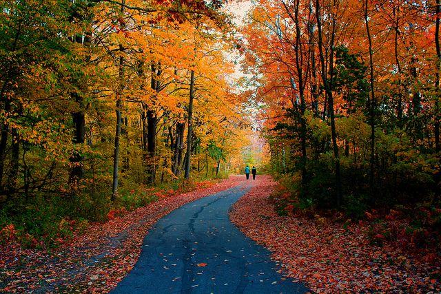 Ponure jesienne nastroje? – jak dodać sobie pozytywnej energii jesienią