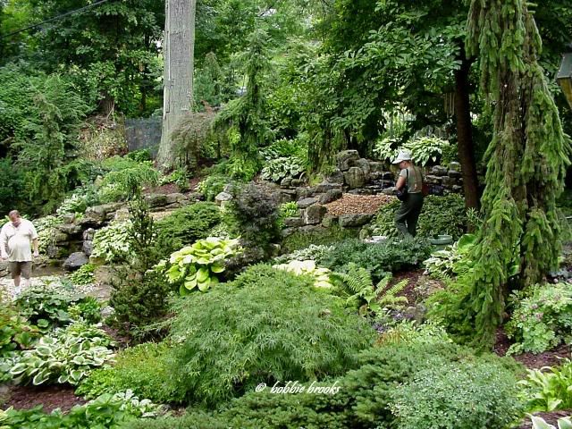 Landscaping Ideas For Shady Hillside : Shaded backyard on gardens in the corner and shade plants
