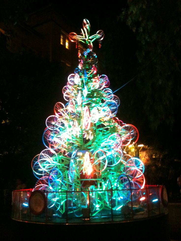 Images about christmas trees on pinterest