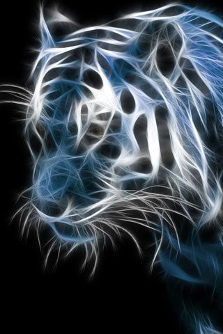 168 best images about neon on pinterest - Neon animals wallpaper ...
