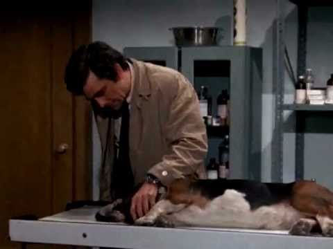 COLUMBO: Detective series starring Peter Falk. Famous for talking about his wife but we never see her. Excellent show. The reruns were great also years later. This parody finds clips of Columbo talking about his wife from one scene after another through all of his shows.