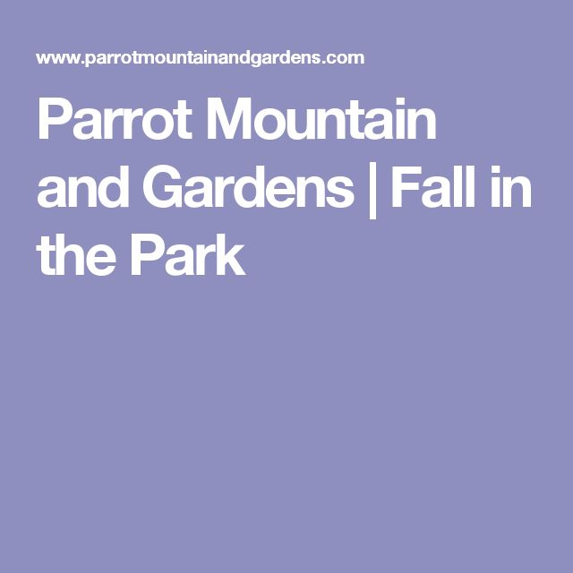 Parrot Mountain and Gardens | Fall in the Park