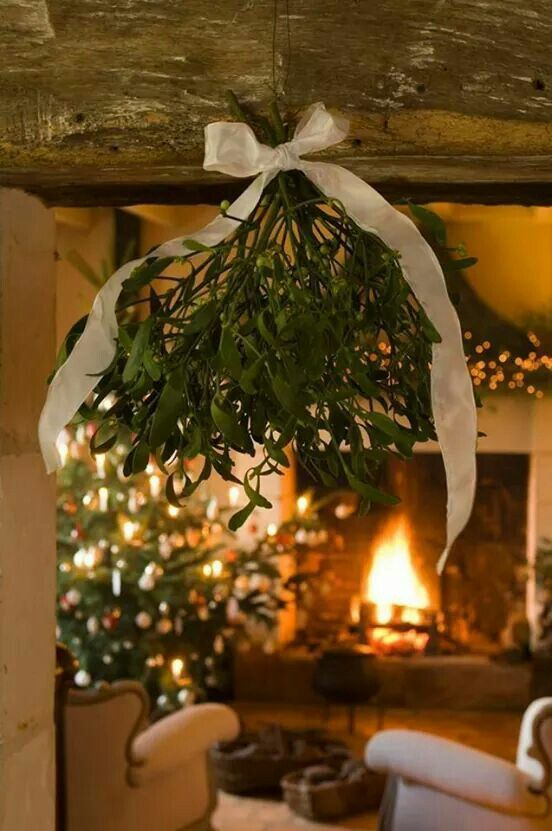 Christmas Mistletoe | Image via bloglovin.com:
