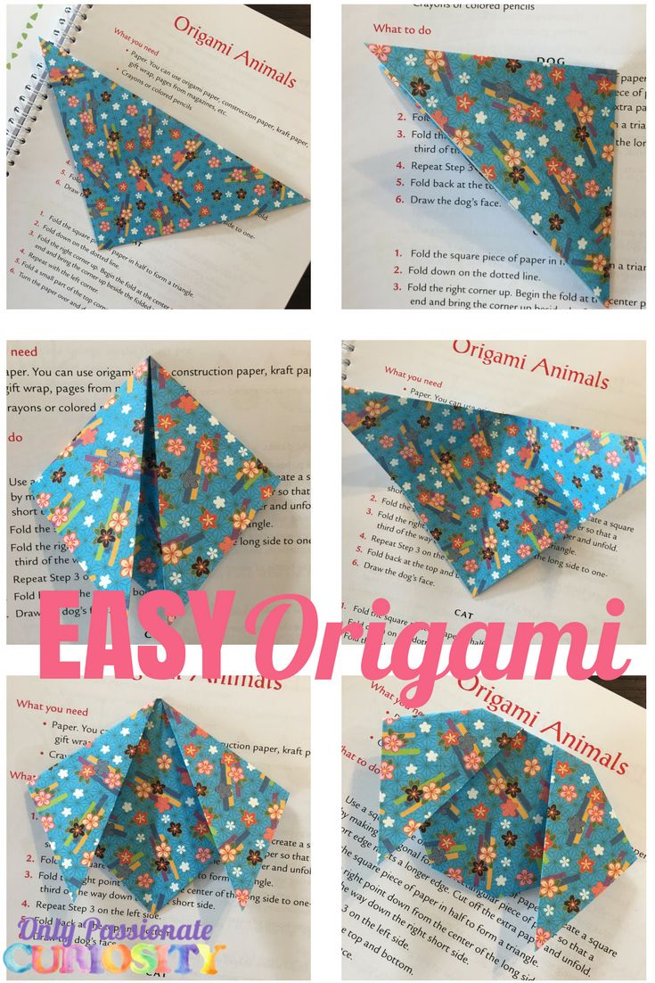 Easy Origami for Kids – Only Passionate Curiosity