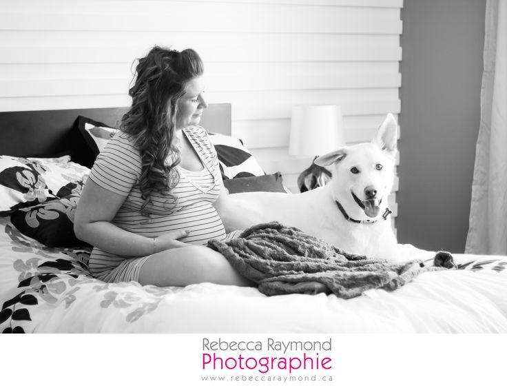Pregnancy maternity photoshoot idea with dog