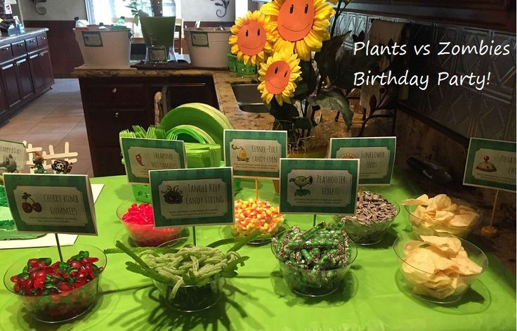Plants vs Zombies Birthday Party ideas - PVZ Birthday