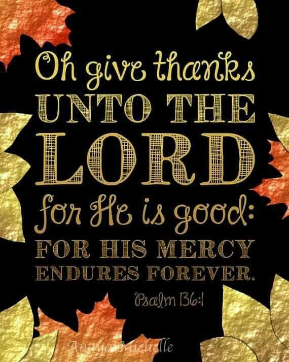 Psalm 136:1 O give thanks to the Lord, for he is good, for his steadfast love endures forever. (NAB)