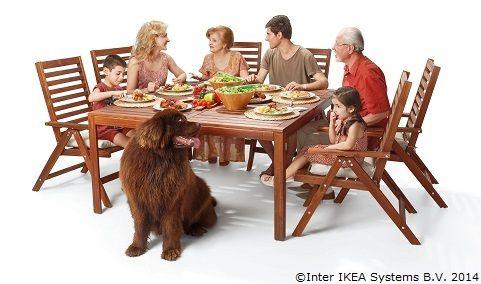 Azi îți dorim să te bucuri de o masă plină, cu cei dragi în jurul ei. Sărbători fericite!