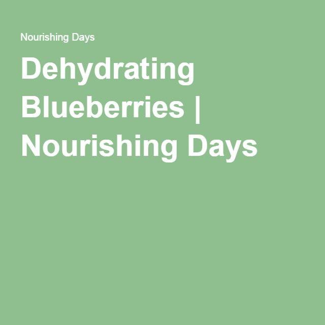 Dehydrating Blueberries | Nourishing Days