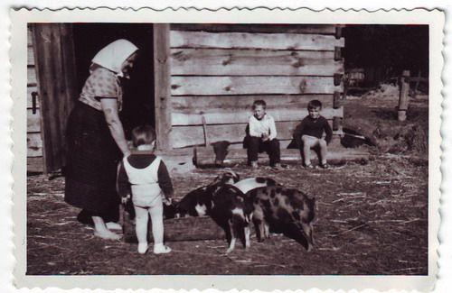 polska wieś w latach 60 chalupa - Szukaj w Google
