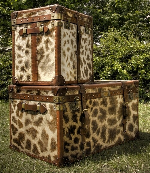 898 Best Images About Antique Trunks Suitcases Amp Chest On Pinterest Vintage Suitcases
