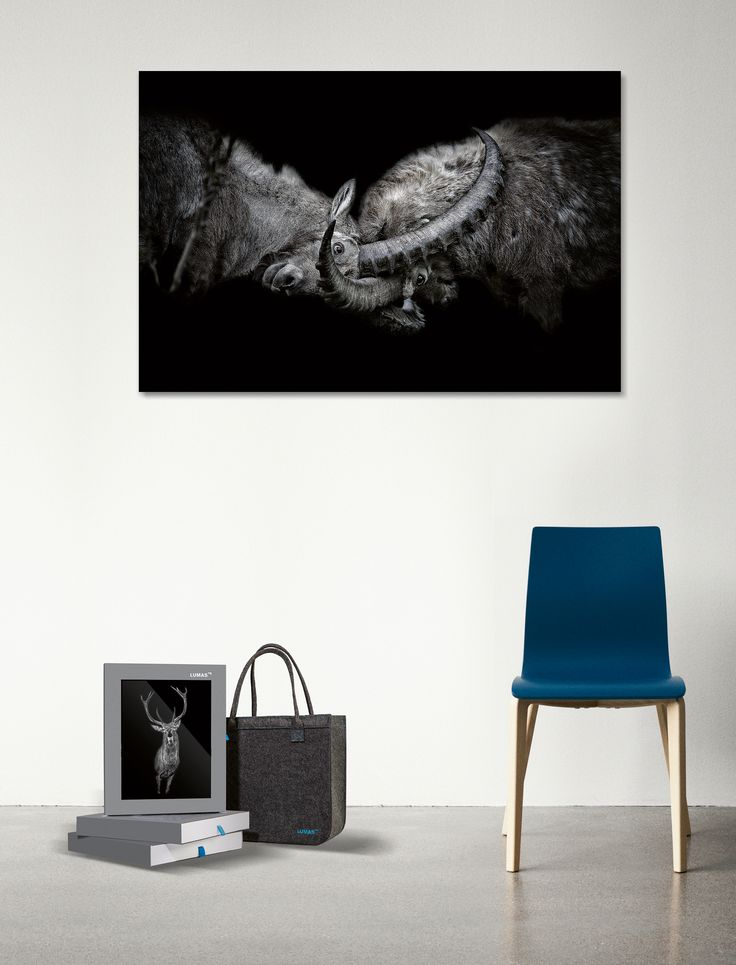 © www.lumas.com. Work by Claudio Gotsch. Objects by Bolia.com