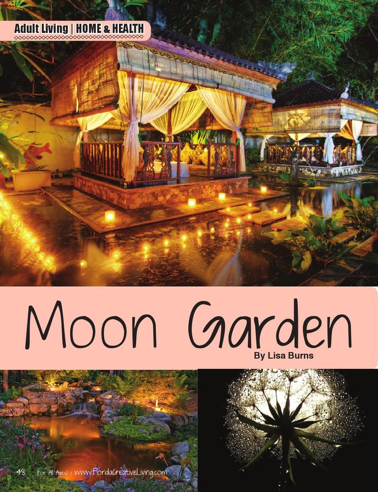 Florida Creative Living Magazine.... How to Create a Moon Garden by Lisa Burns