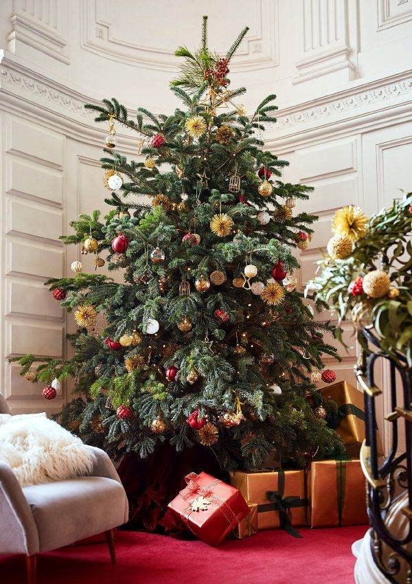 Zarahome Christmas 2016 Enormous Christmastree And Xmasgifts